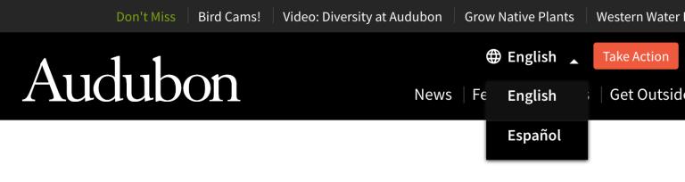全米オーデュボン協会のサイトのスクリーンショット
